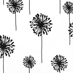 Dandelion White Black