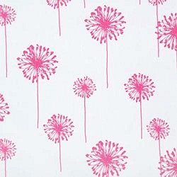 Dandelion White Candy Pink