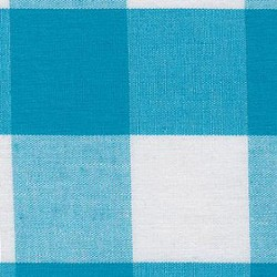 Turquoise Blue Gingham 1""